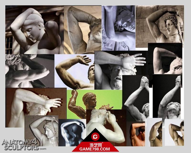 m_1723100_anatomy.jpg