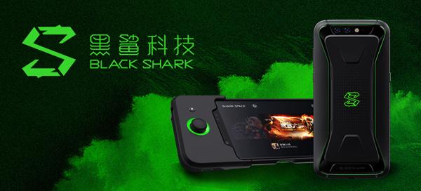 图12 黑鲨.jpg