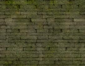 长满苔藓的墙
